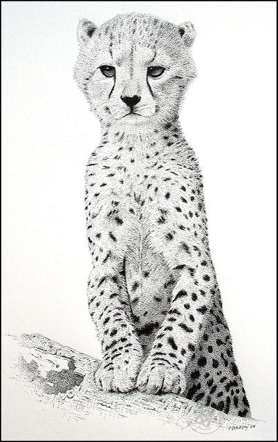 Young Cheetah Pointillism In 2019 Animal Sketches