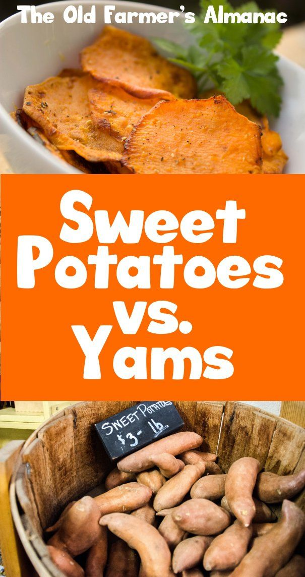how to cook yams and sweet potatoes