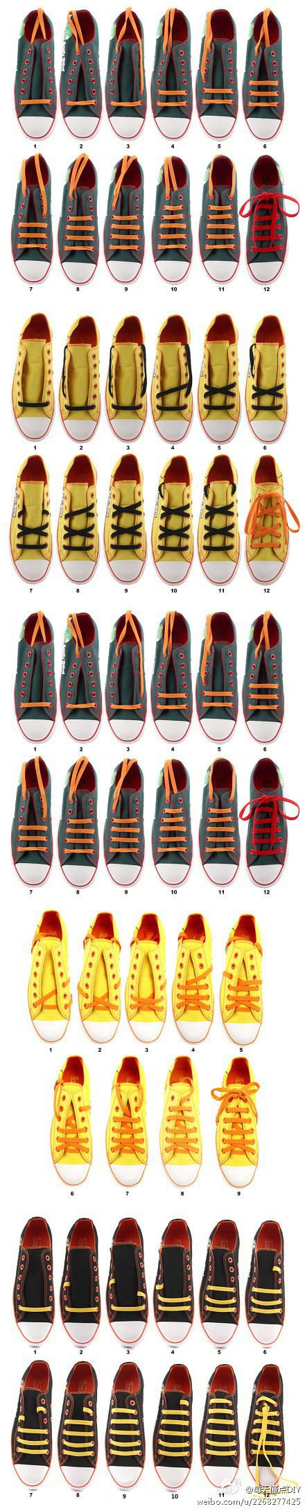 Diff rence entre lacets pratique et esth tique - Difference entre pin et sapin ...