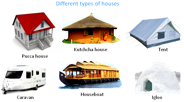 Different types of houses project pinterest homework for Pictures of different homes