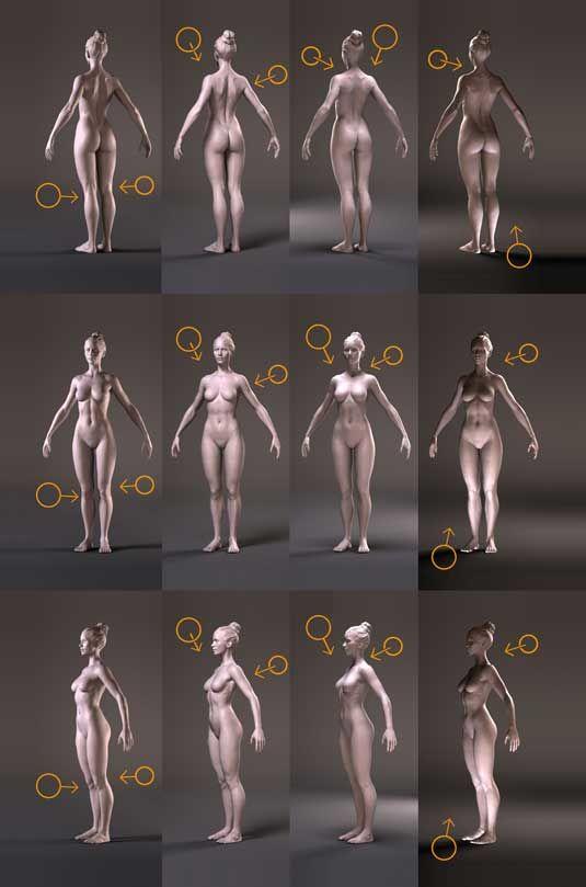 10 Anatomy Tips For 3d Artists Zbrush Pinterest Anatomy
