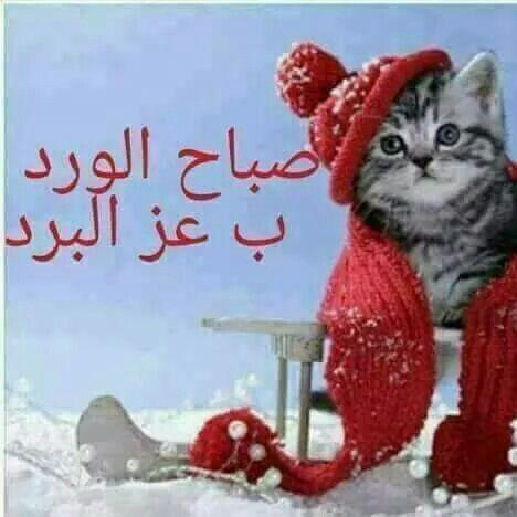 Pin By Mam On الصباح والمساء Good Morning The Dreamers Jumma Mubarak