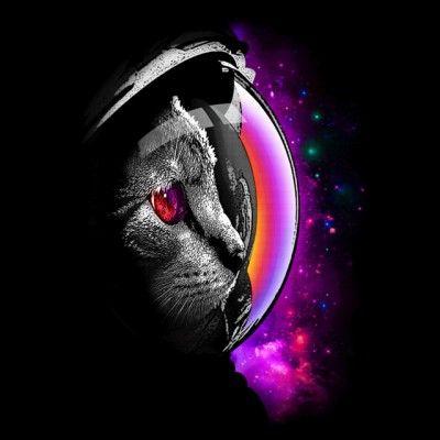 Tee Shirt Spacecat Noir Illustration De Chat Dessin Chat Chat Espace