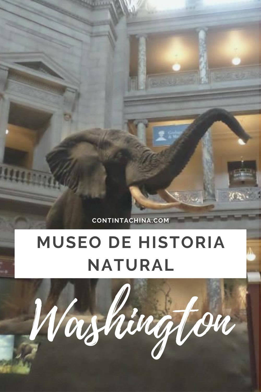 Pin En Museos Del Mundo
