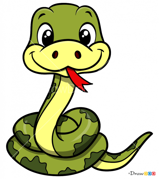 Find Hd Free How To Draw Snake Drawing Of A Snake Cartoon Download It Free For Personal Use In 2020 Snake Drawing Baby Elephant Drawing Cute Drawings
