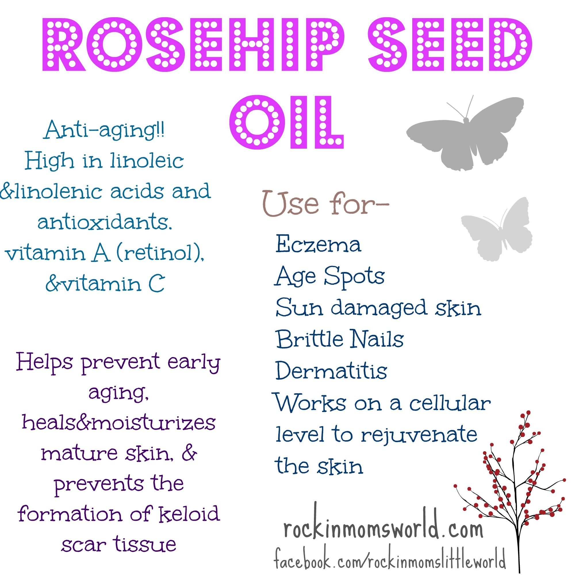 Rosehip Seed Oil | Share Today's Craft and DIY Ideas
