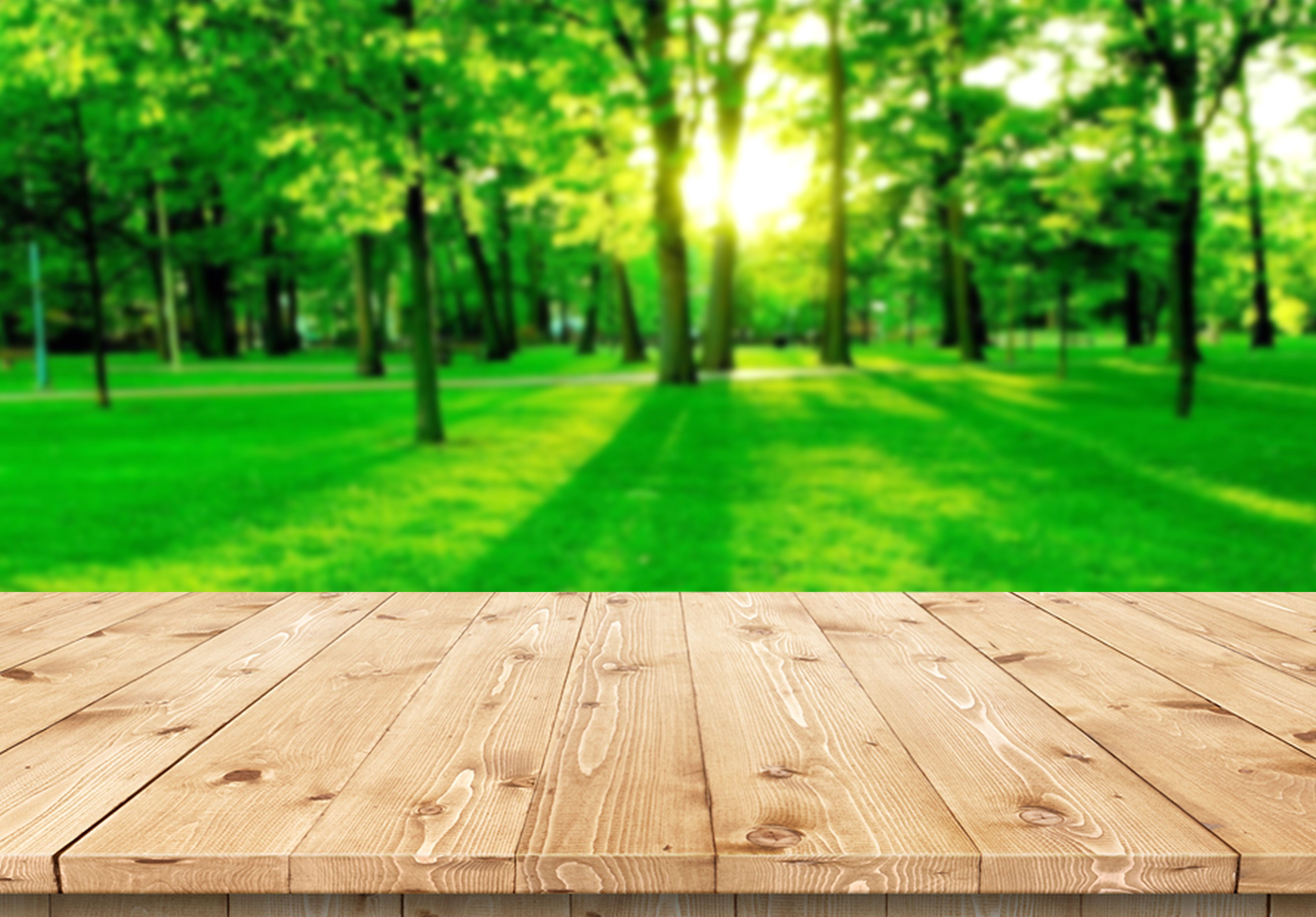 Wood Floor With Blurred Nature Park Background And Summer Season Use For Product Display Background Wood Floors Wood