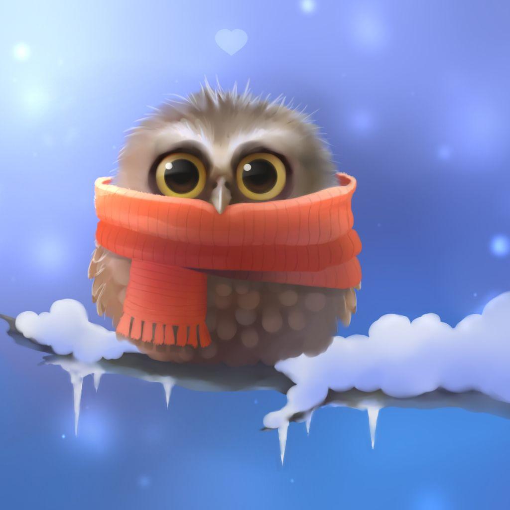 Cute Owl Graphic Ipad Wallpaper Owl Wallpaper Owl Art Print Owl Art