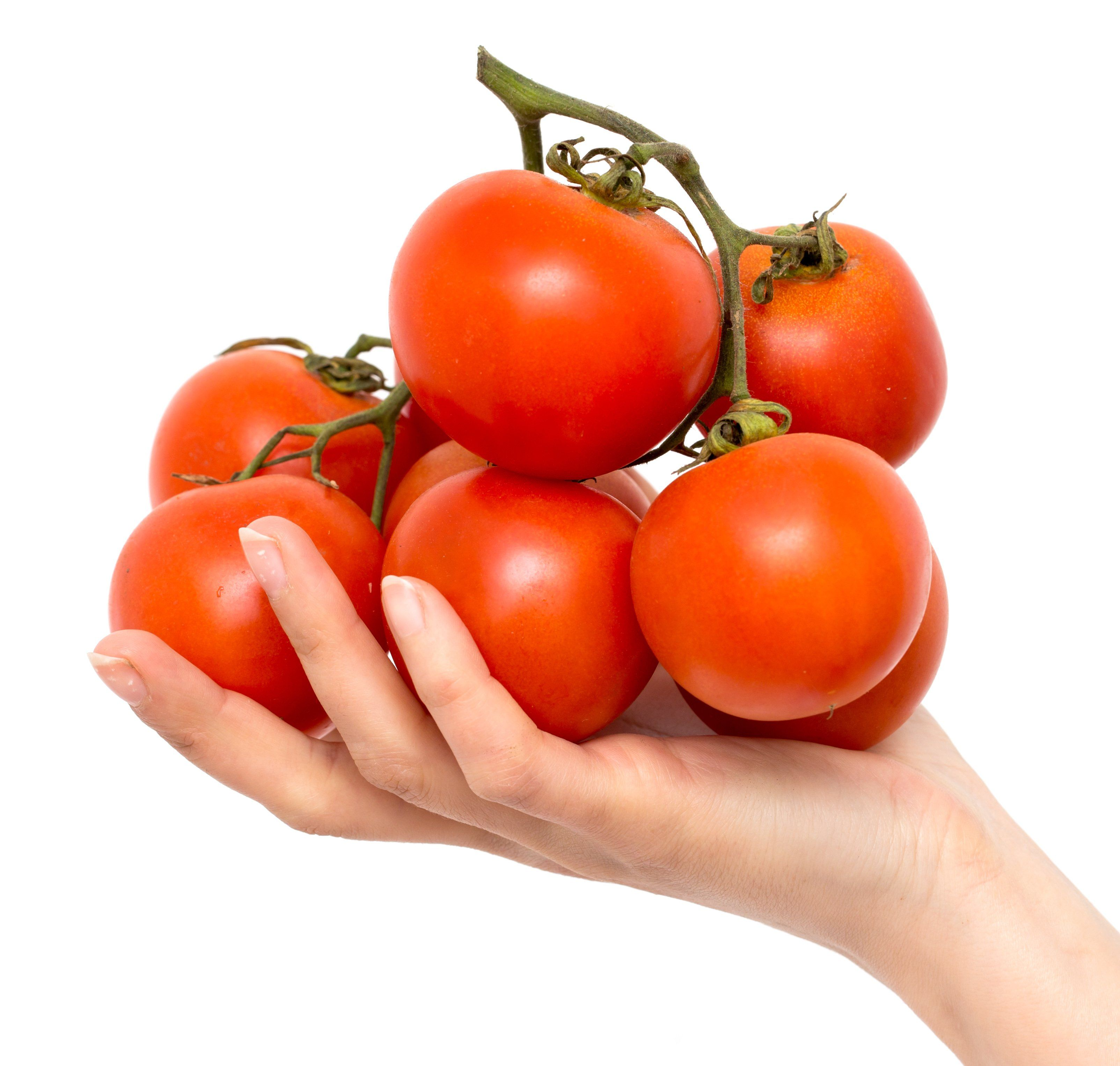 Jet Star Hybrid Tomato Seeds Growing Tomatoes Tomato Seeds Tomato Garden