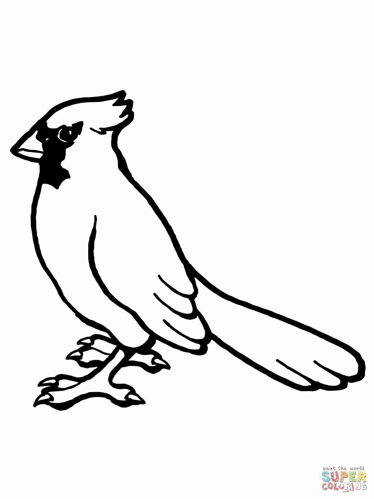 Arizona Cardinals Coloring Pages Arizona Cardinals Coloring Page Lovely Arizona Cardinals Bird Coloring Pages Animal Coloring Pages Coloring Pages