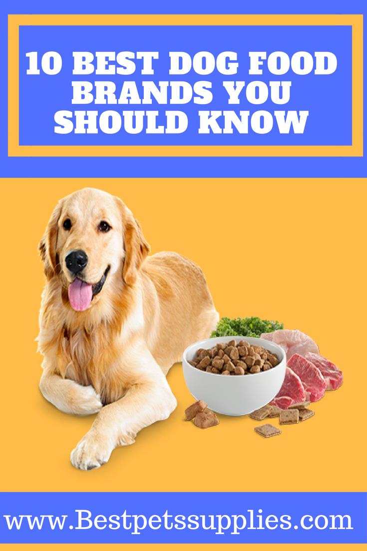 10 Best Dog Food Brands Dog Food Recipes Top Dog Food Brands