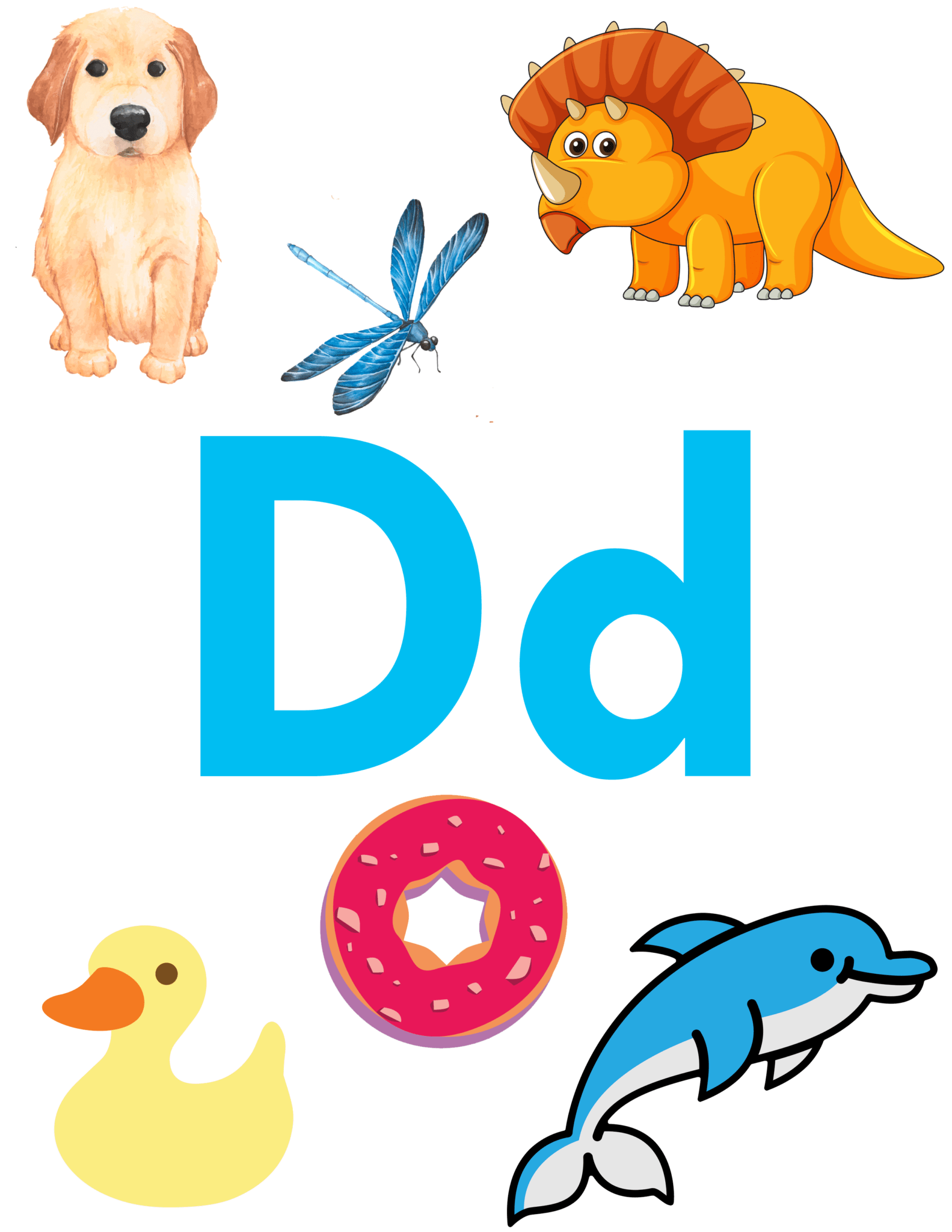 Letter D Activities Crafts Recipes More