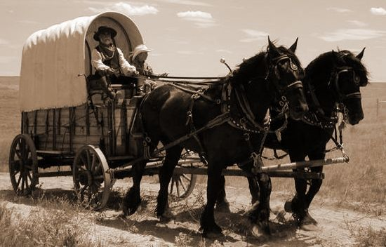 Wagon Trains An Excerpt From An Article By Blanche Burton Hesse