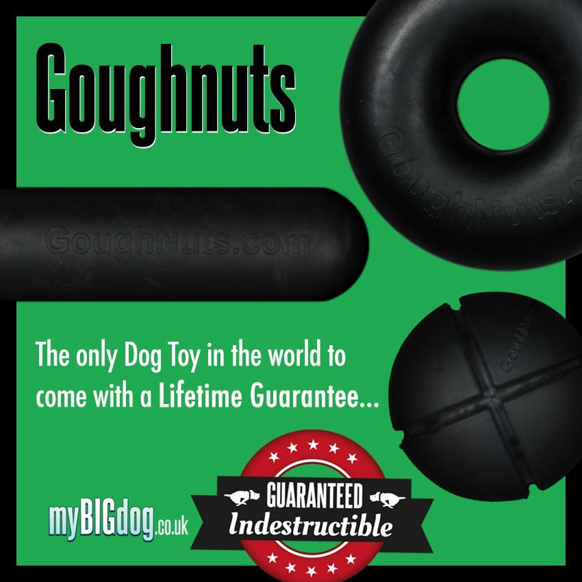 Guaranteed Virtually Indestructible Dog Toys From Goughnuts At