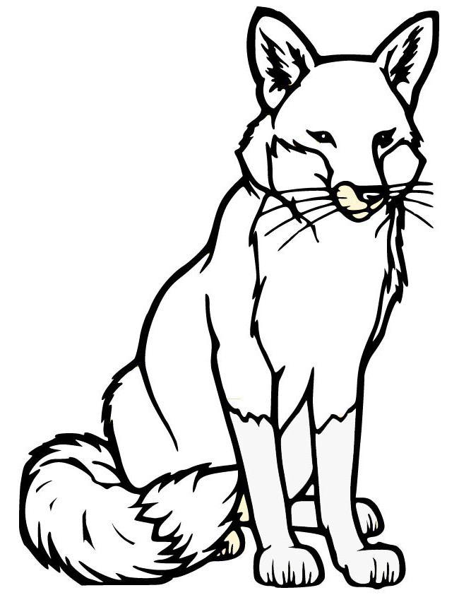 Animal Templates Free Premium Templates Fox Coloring Page Fox Silhouette Animal Templates