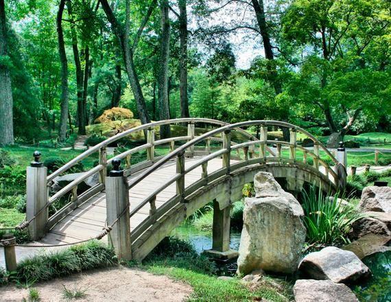 mural green park with bridge xxl wall decor park. Black Bedroom Furniture Sets. Home Design Ideas
