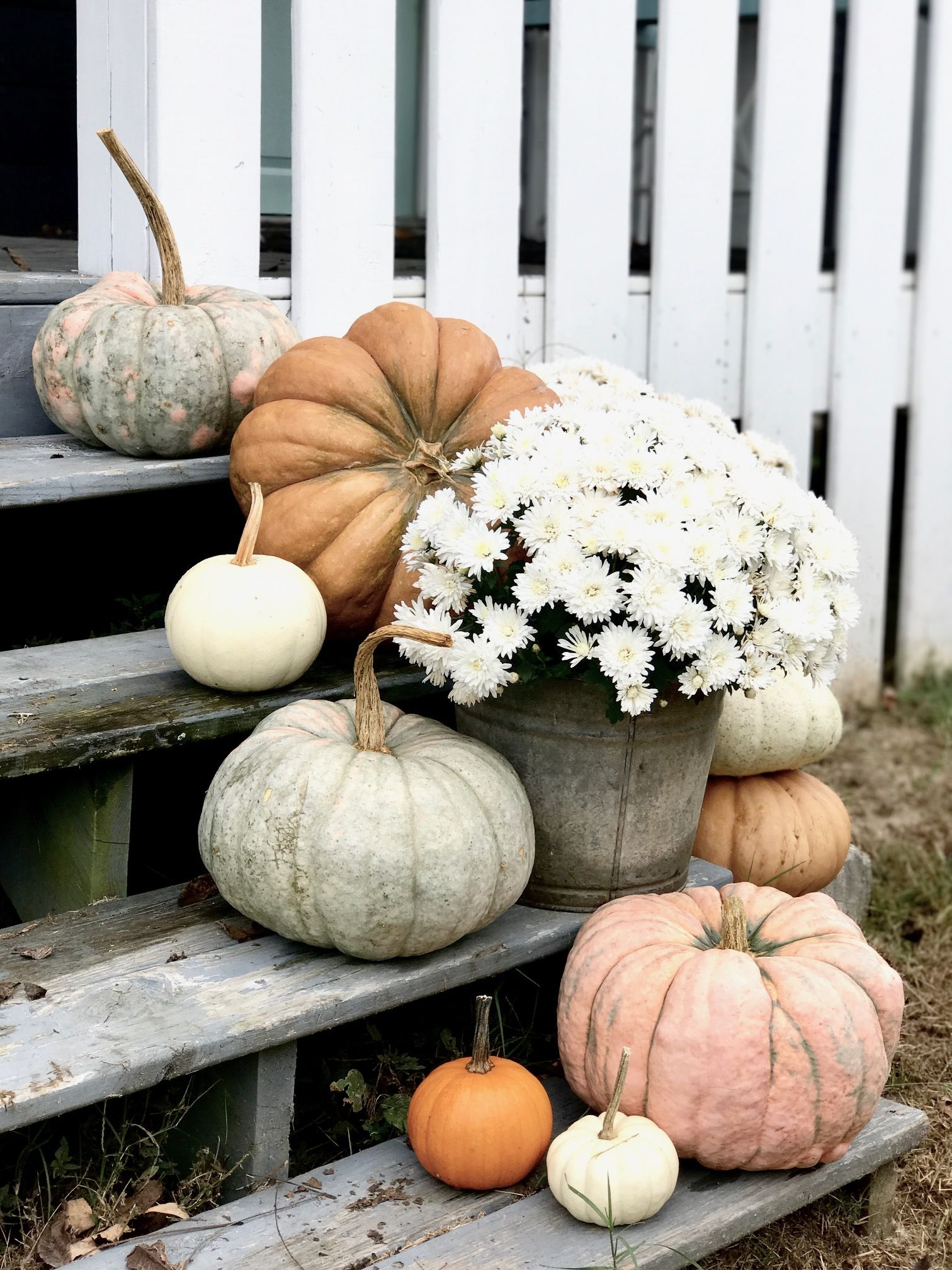 Pumpkins on the Front Porch Steps for Fall #fallfrontporchdecor