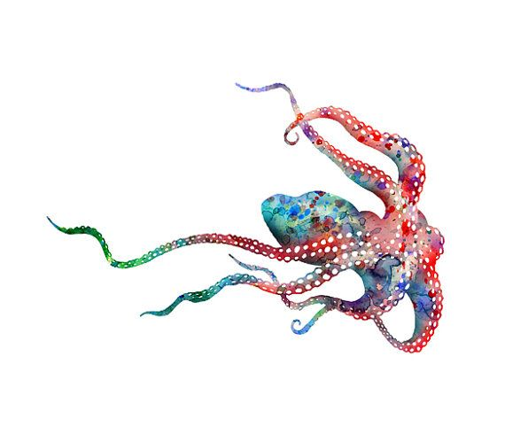 Ocean art octopus print nautical decor ocean animal for Colorful octopus painting