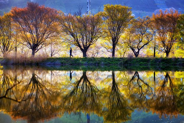 The Beauty Of South Korea Captured In Stunning Reflective - The beauty of south korea captured in stunning reflective landscape photography