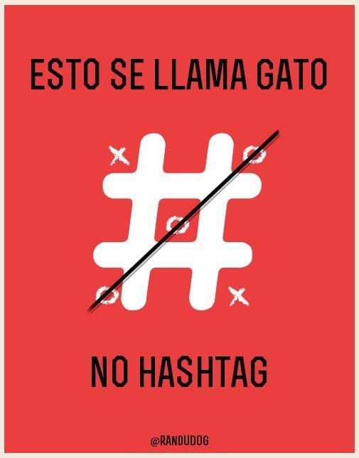 #estosellamaGato