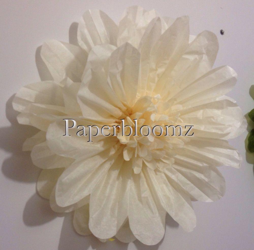 Large vanilla paper flowers x 5 bulk wedding flowers birthdays large vanilla paper flowers x 5 bulk wedding flowers birthdays events wall decor mightylinksfo