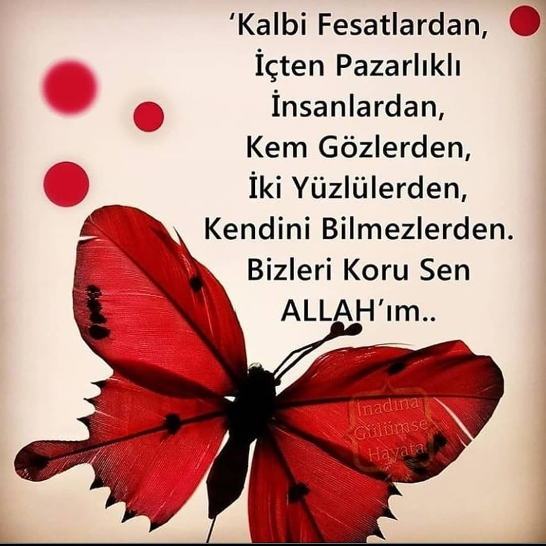 Hazreti Mevlana Sozleri Www Corek Otu Yagi Com Some Words Words Words Of Wisdom