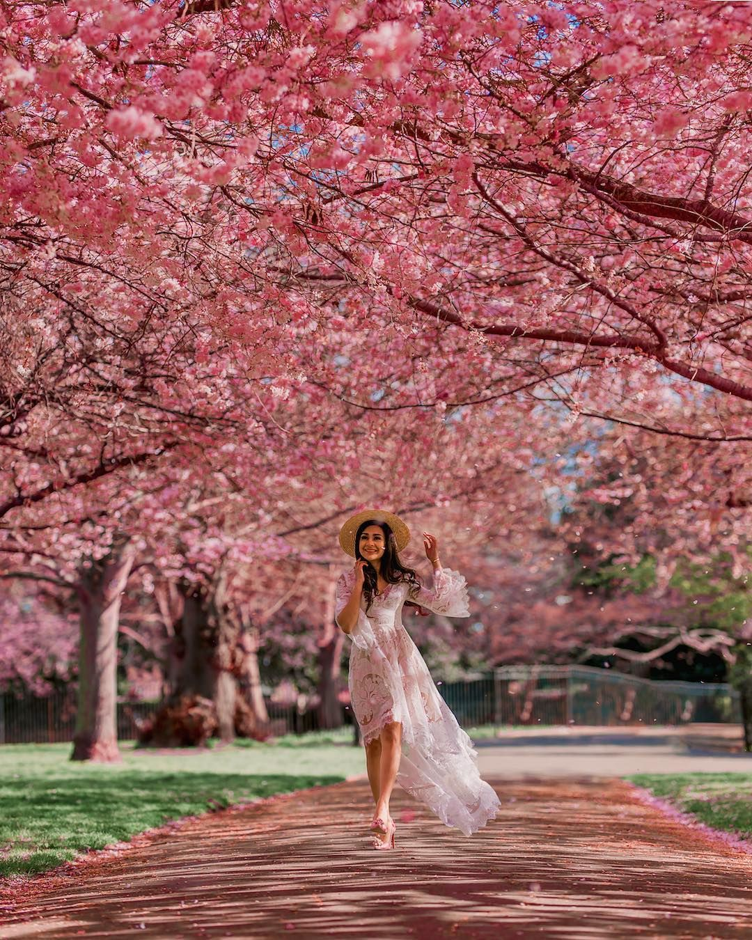 Cassie Cassiesamji London Is In Bloom Spring In London Is The Most Beautiful Time I Love These Perfect Pink Blo Pink Blossom Blossom Floating Flowers