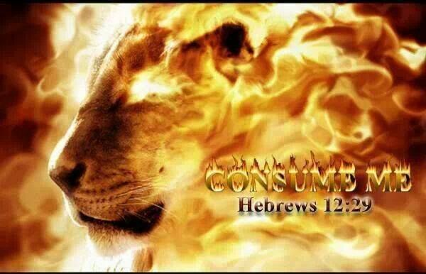 Hebrews 12:29 For our God is a devouring fire.