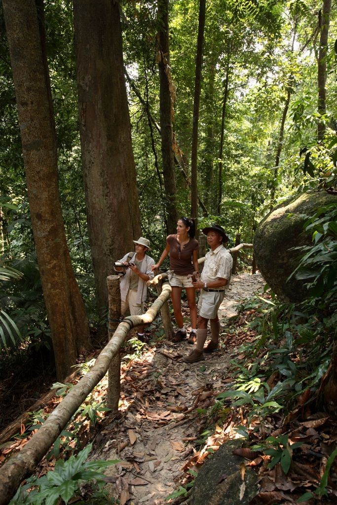 Take a walk in a two million year old rainforest… This unique experience is available at Pangkor Laut Resort in Lumut, Malaysia, under the expert guidance of their resident naturalist, who will accompany you throughout your walk. http://www.slh.com/hotels/pangkor-laut-resort/