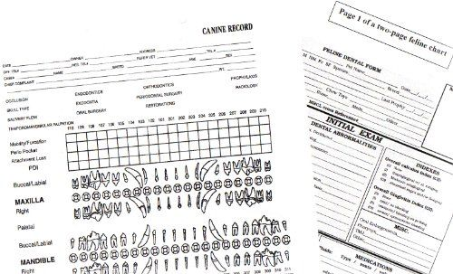 AVDC Canine And Feline Dental Record Charts You Can Find More Details By Visiting The