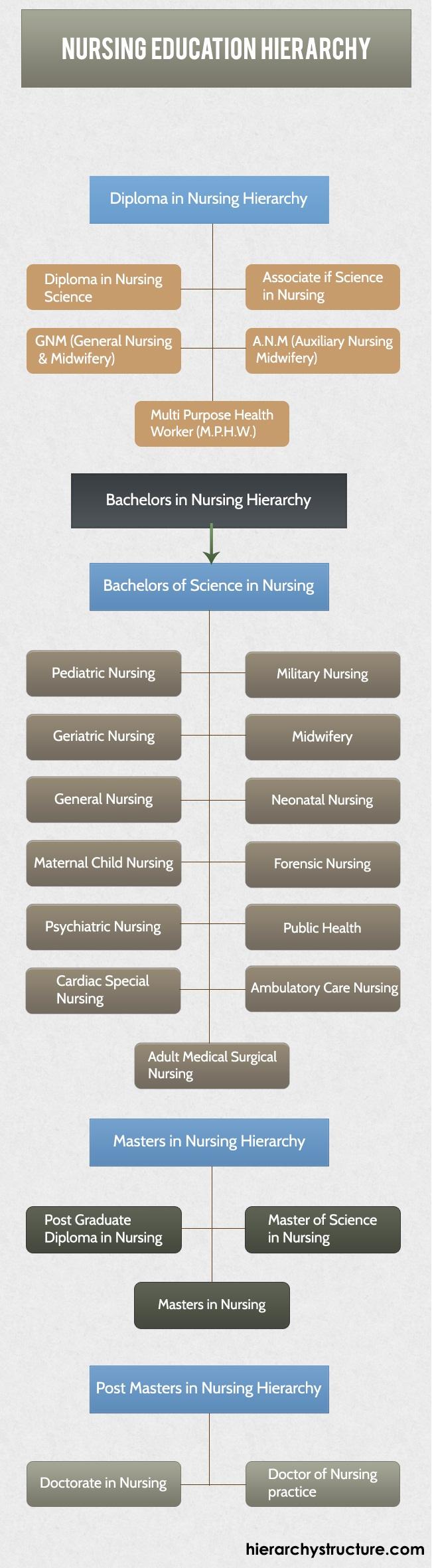 Nursing Education Hierarchy Education Hierarchy Pinterest