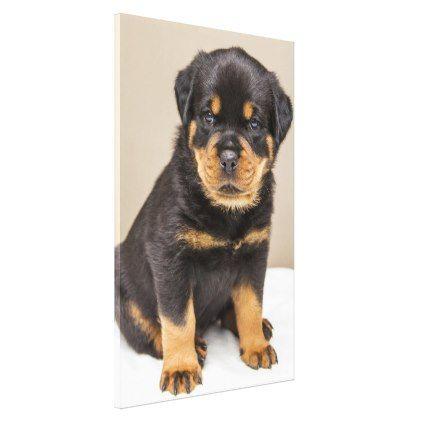 Rottweiler Puppy Portrait Canvas Print Zazzle Com Rottweiler