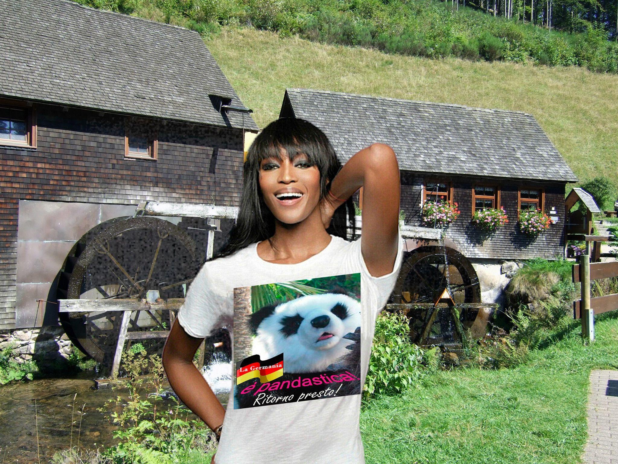 LA GERMANIA è pandastica! - Ritorno presto!