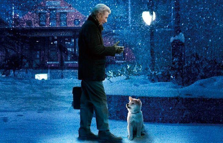 ТОП-20: Лучшие фильмы про животных для семейного просмотра ...
