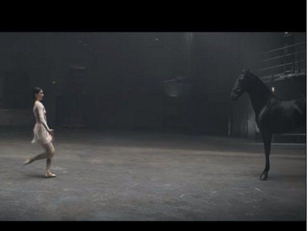 ¿Alguna vez has visto una competencia así? Una bailarina reta a un caballo. ¿Quién crees que gane? Video sorprende en YouTube.