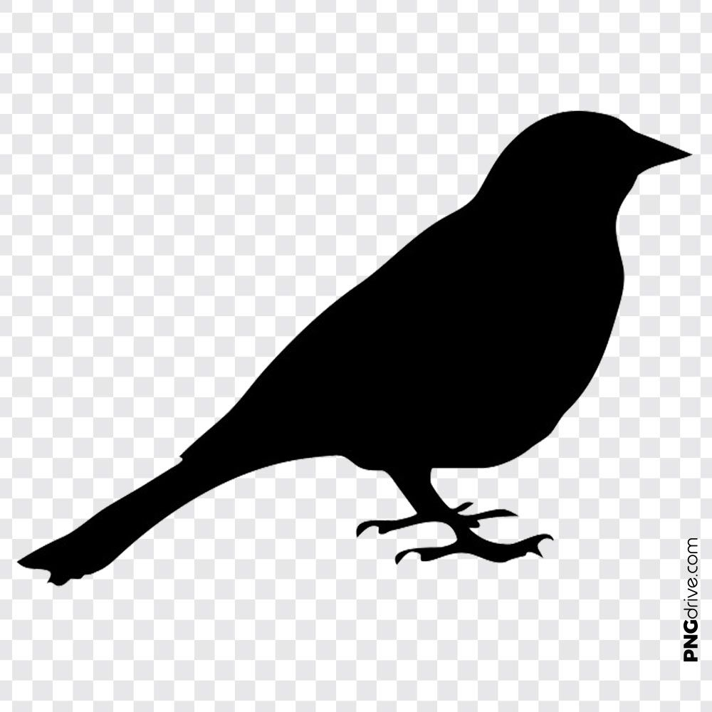 Pin By Png Drive On Birds Png Image Vector Clipart Color Shades Bird Clipart