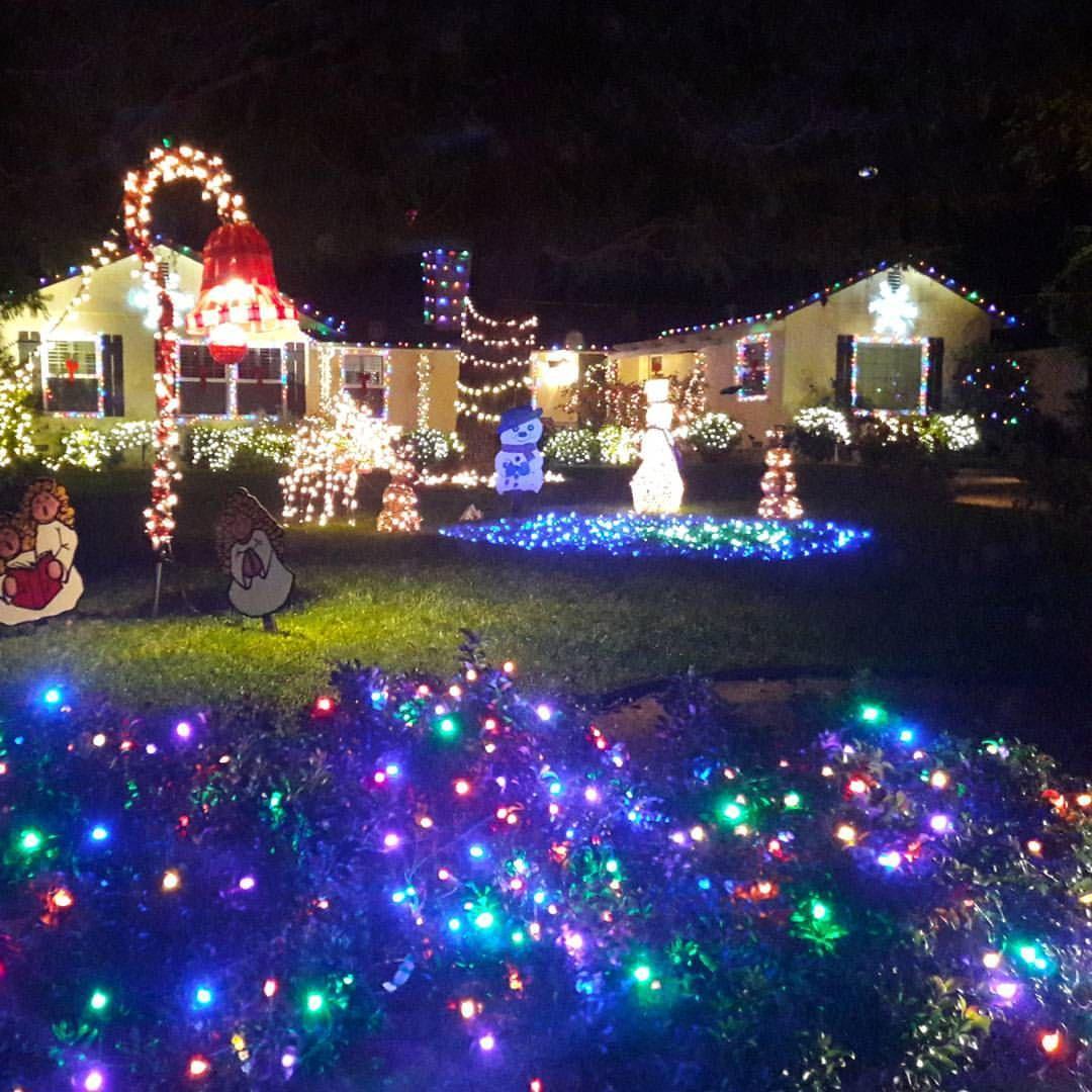 Christmas Tree Lane Los Angeles: Candy Cane Lane In El Segundo