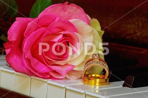 Wedding Rings on a piano keyboard and Flowers Stock Photos ,#piano#Rings#Wedding#keyboard