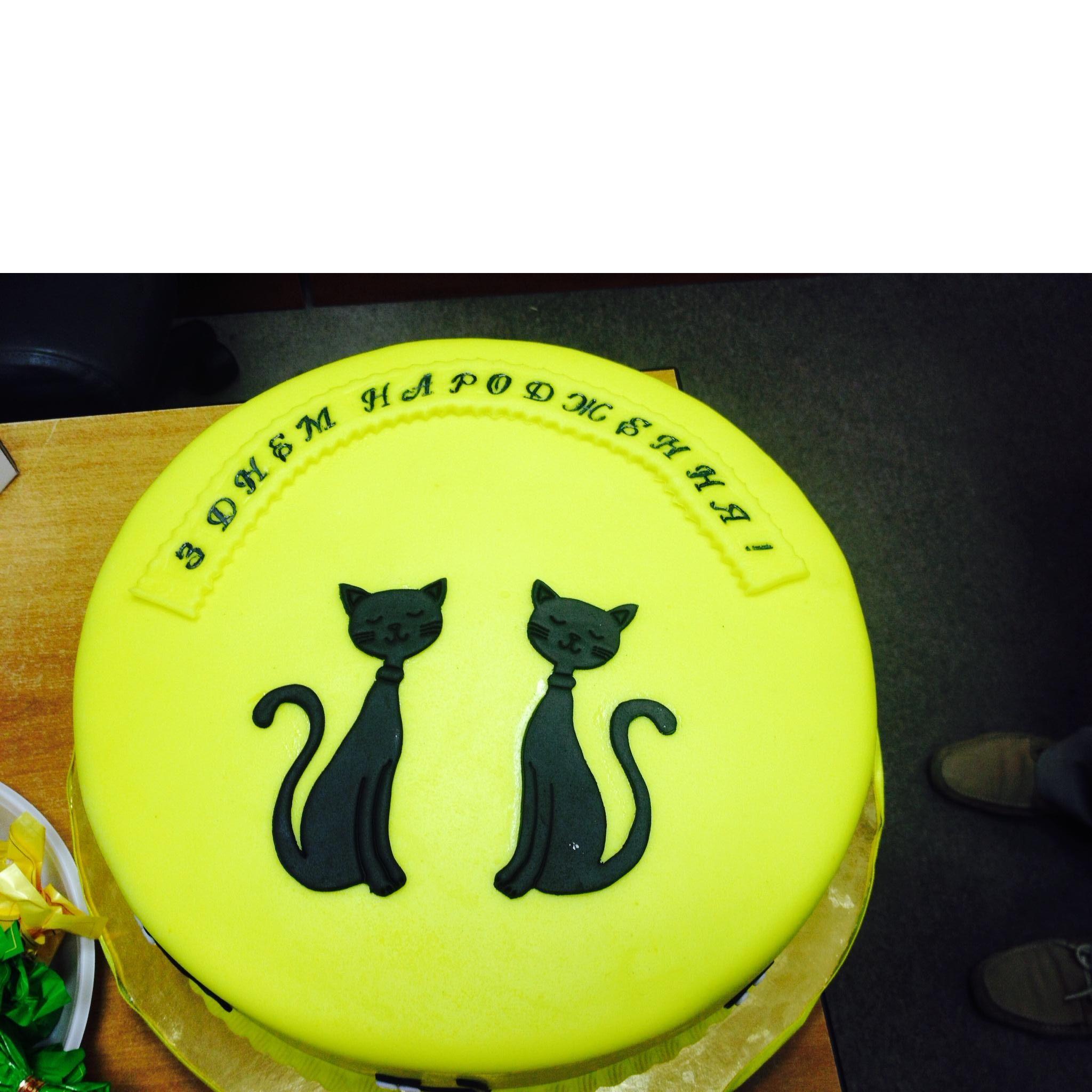 Коти #торт_на_заказ_бровары #день_рождения #бисквитный_торт