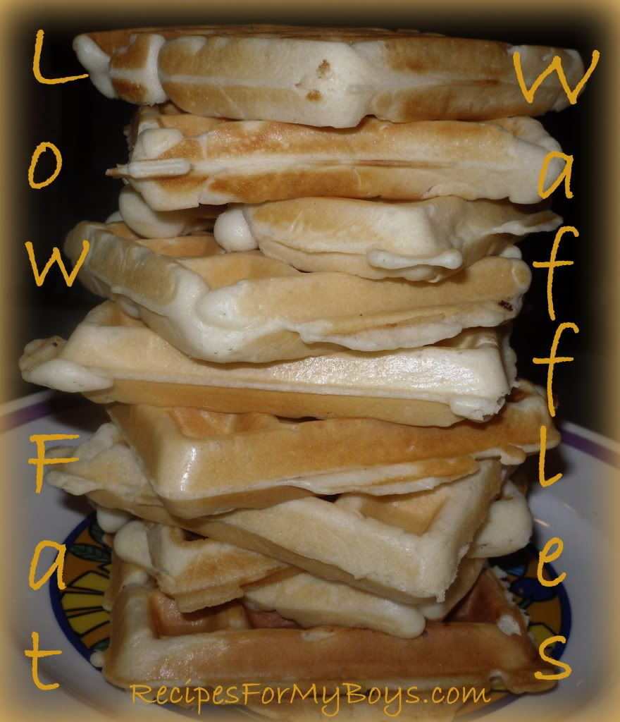 Recipes for my boys low fat waffles made with bisquick and club recipes for my boys low fat waffles made with bisquick and club soda forumfinder Image collections
