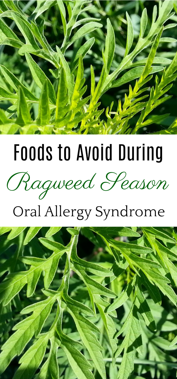 9 Foods To Avoid During Ragweed Season Allergy