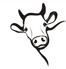 Cow Outline Simple Google Search ̝¼ëŸ¬ìŠ¤íŠ¸ëˆì´ì…˜ Ê·¸ë¦¼ ̆Œ