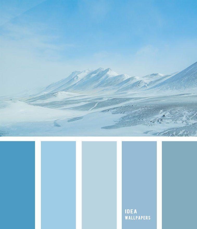 Winter color palette | Winter color palette, Color palette ...