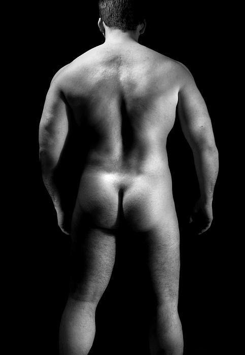 bear chubby briefs nude
