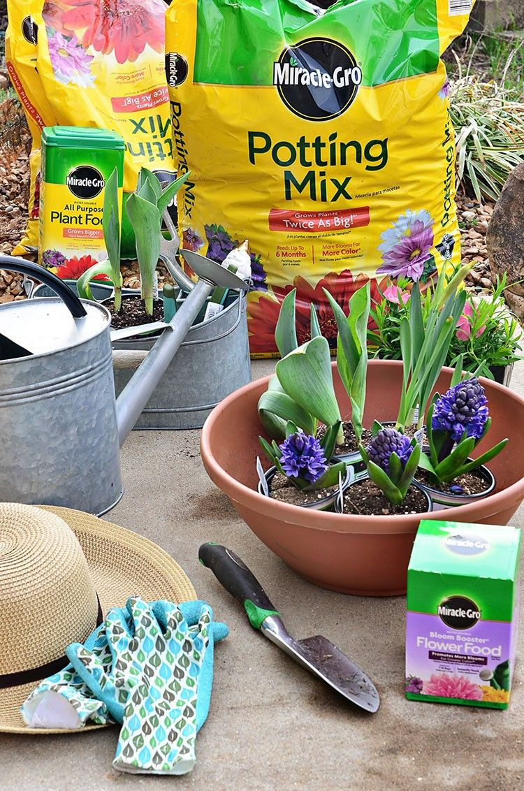 In partnership with influencer @tidymom - Use Miracle-Gro Potting Mix and Flower Food for the perfect pair to add some spring florals to your porch. #ad