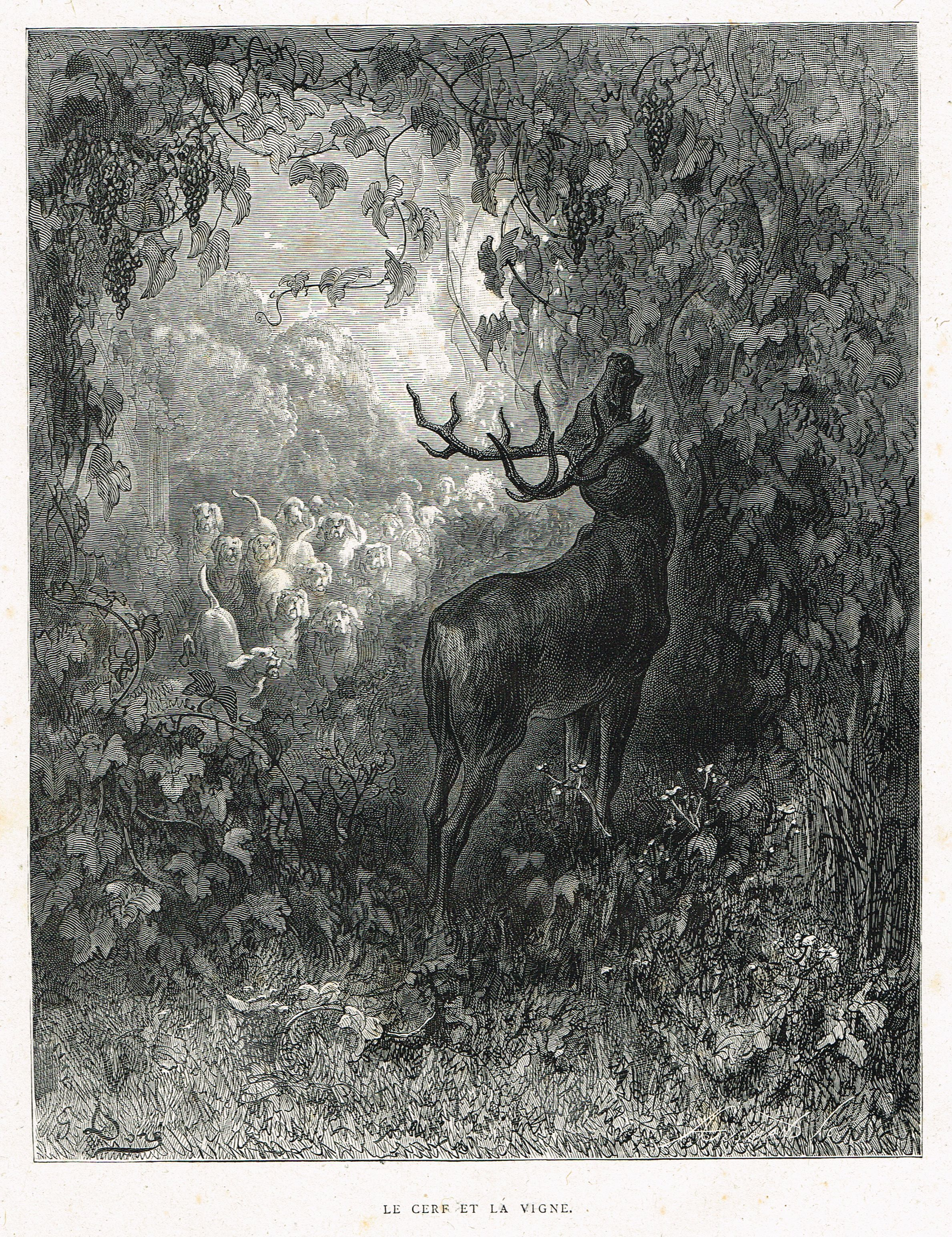 Le Cerf Et La Vigne Fable De Jean De La Fontaine Illustree Par Gustave Dore Mas Estampes Anciennes Mas Ant Painting Illustration Photo Art Nature Drawing