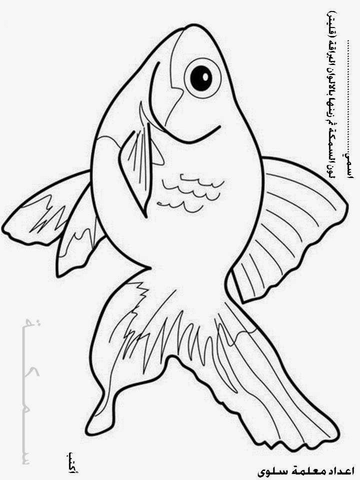 روضــــتــــــي أوراق عمل حرف س Animal Coloring Pages Fish Art Colorful Quilts