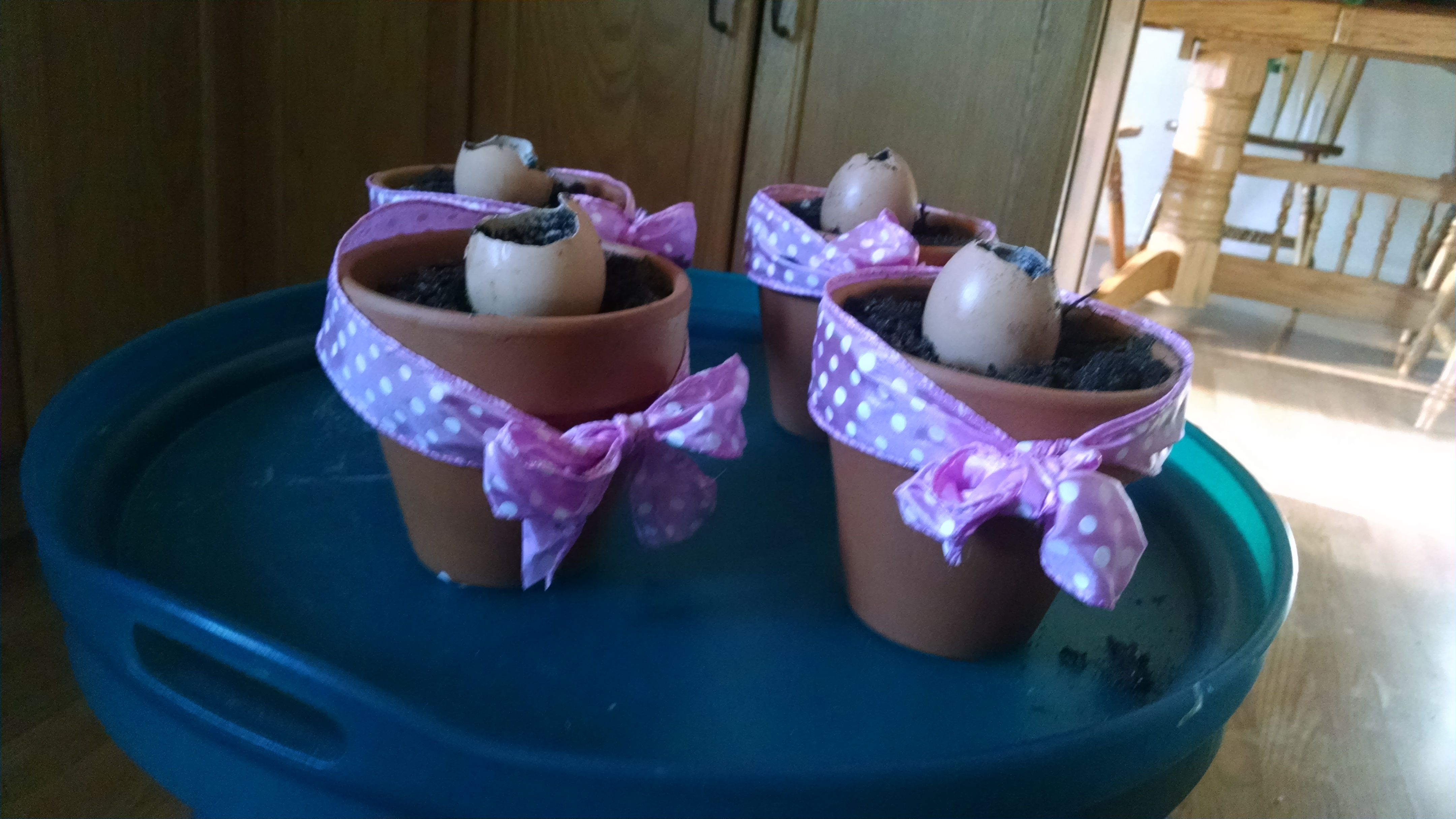 Another view of the bean sprout party favors, this is