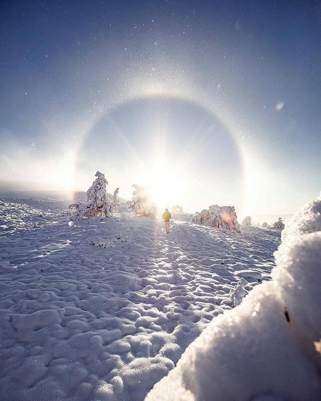 """Weather from the Met Office on Instagram """"Stunning shot of a sunhalo over Lapland! 😮😍       📸@villepaakkonen  sun halo snow lapland finland cold white wow photography…"""" is part of Winter beauty - 1,144 Likes, 8 Comments  Weather from the Met Office (@metoffice) on Instagram """"Stunning shot of a sunhalo over Lapland! 😮😍       📸@villepaakkonen  sun halo snow lapland…"""""""