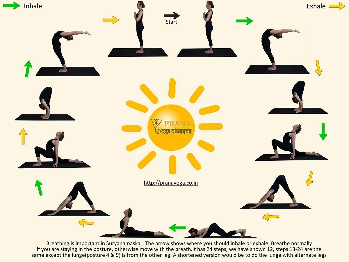 Surya Namaskar Hatha Yoga Pranayoga Surya Namaskar Hatha Yoga Yoga Meditation Poses